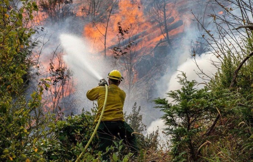 photo of firefighter spraying water on a wildfire
