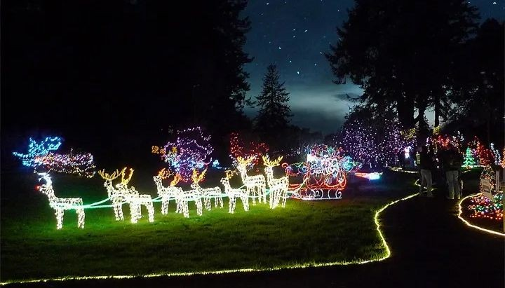 Photo of outdoor holiday lights display