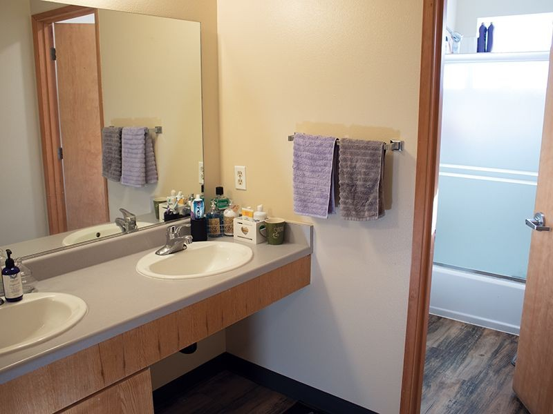 Bathroom sinks in a student housing apartment